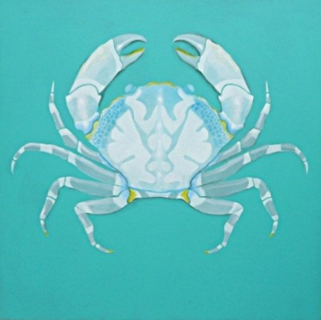 Barry Fitzpatrick - Aqua crab